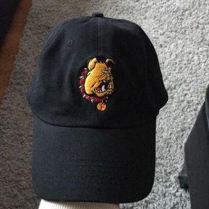 Other - Ferris State Bulldogs Dad cap
